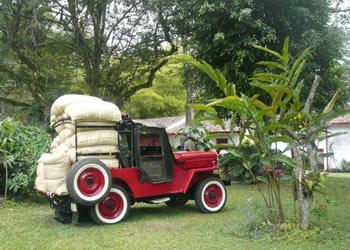 willys jipao explora bogota tours